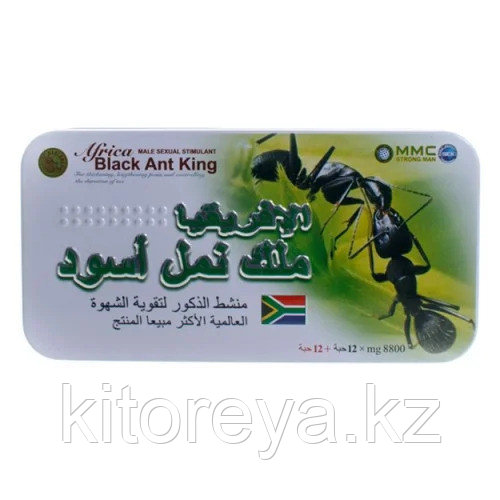 Африканский черный муравей - Africa Black Ant King