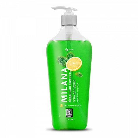 Milana гель для душа Бодрящая свежесть с маслом лемонграсса, фото 2