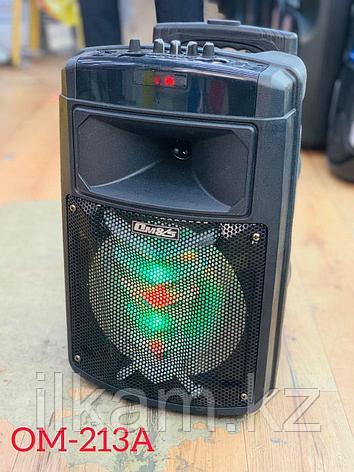 Колонка акустическая OM-213A, фото 2