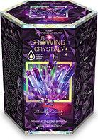"""Набор для проведения опытов """"Growing CRYSTAL Amethyst"""" Выращиваем кристаллы"""