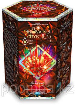 """Набор для проведения опытов """"Growing CRYSTAL Opal"""" Выращиваем кристаллы"""