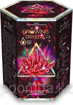 """Набор для проведения опытов """"Growing CRYSTAL Rubin"""" Выращиваем кристаллы"""