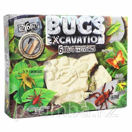 Набор для проведения раскопок Bugs Excavation Насекомые (Огнецветка малая, Жук Геркулес)