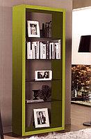 """Книжный шкаф """"Октавия"""""""