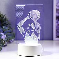 "Светильник ""Баскетбол"" LED RGB от сети 13х21,5 см"