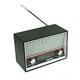 Радиоприемник портативный Ritmix RPR-101 BLACK, фото 2