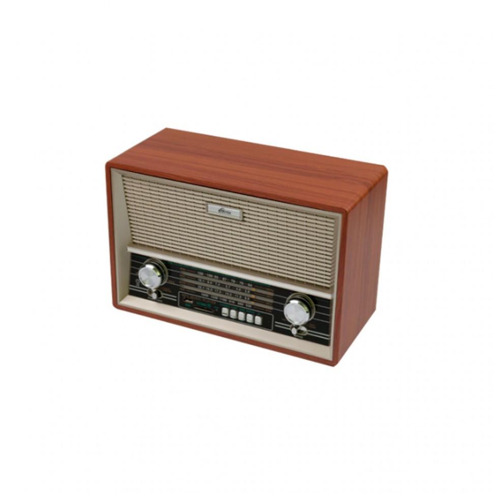 Радиоприемник портативный Ritmix RPR-101 buk