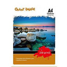 Фотобумага А4 GIANT IMAGE GI-A423050G 50 Л. 230 Г/М2 глянц.