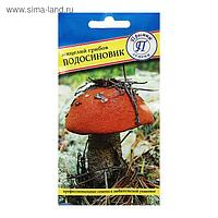 Мицелий гриб Подосиновик, 50 мл