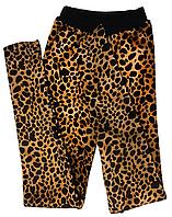 Лосины - ТЕРМО тигровые (подростковые)