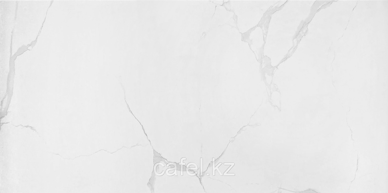 Керамогранит 120х60 White Daniarri