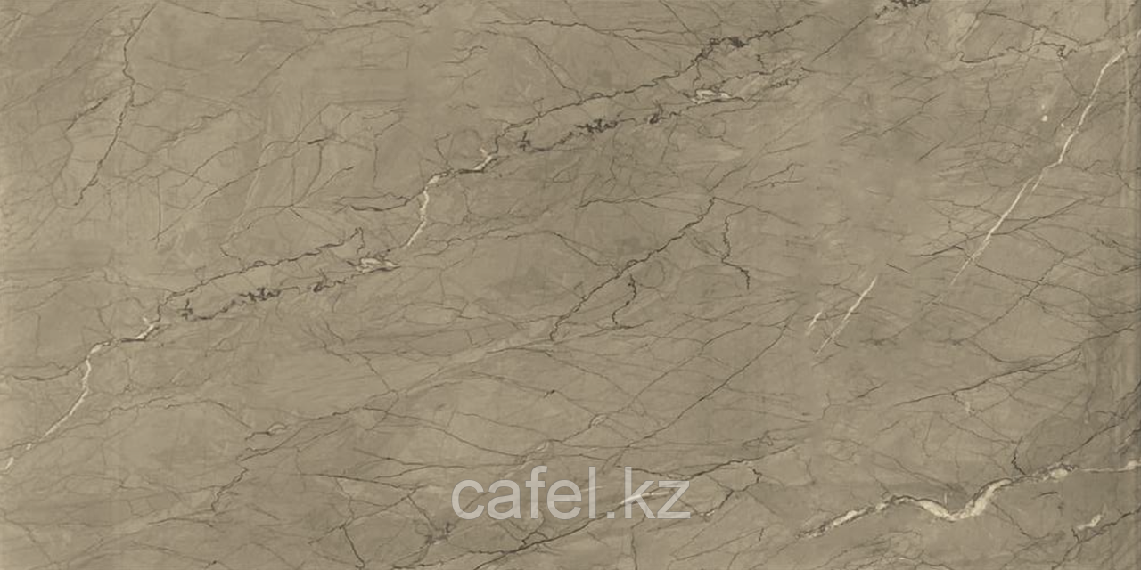 Керамогранит 120х60 Silver flower beige