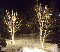 Оформление деревьев гирляндами