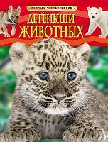 Книга. Энциклопедия детская. Детеныши животных