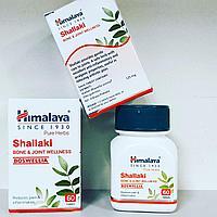 Шаллаки (Shallaki Himalaya) - при проблемах с опорно-двигательным аппаратом, при заболеваниях суставов, 60 таб