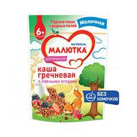 Каша детская молочная гречневая с лесными ягодами Малютка 220г