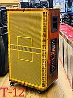 Акустическая система Т-12. Большой мощный DJ бас сабвуфер.