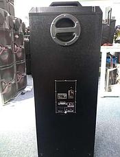 Акустическая система  TD 1070, фото 2