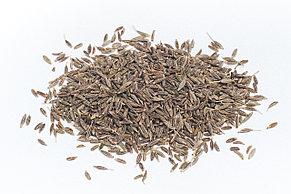 Зира (кумин), 50 гр (Дядя Сэм)