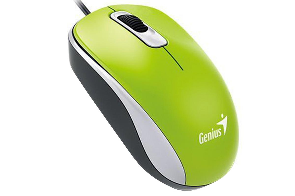 Мышь оптическая  Genius DX-110, Green, G5