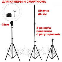 Профессиональная  кольцевая лампа 46 см для фотоаппарата и смартфона YQ-480B Штатив в комплекте, фото 2