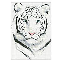 Набор алмазной вышивки «Белый тигр»