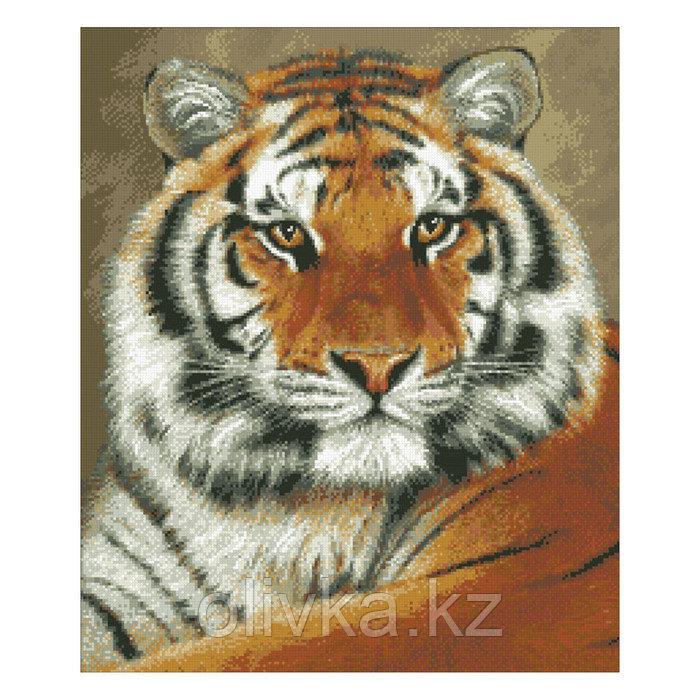 Набор алмазной вышивки «Тигр»