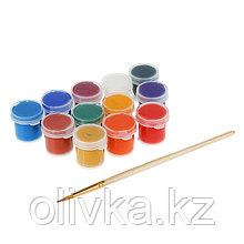 Краска акриловая, набор, 12 цветов х 4 мл, «Аква-Колор», художественно-оформительская, с кистью, морозостойкая