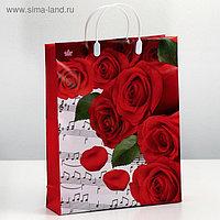 "Пакет ""Пиано"", мягкий пластик, 40х30 см, 140 мкм"