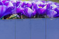 Шкаф-стол 400,3Я как часть комплекта Подснежник МДФ фотопечать, Сизый, Стендмебель (Россия), фото 3