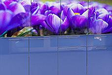 Шкаф кухонный 800, 2Д  как часть комплекта Подснежник МДФ фотопечать, Рисунок Светлый, Стендмебель (Россия), фото 2