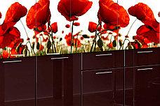 Комплект мебели для кухни Маки МДФ фотопечать 1600, Рисунок Светлый, Стендмебель(Россия), фото 2