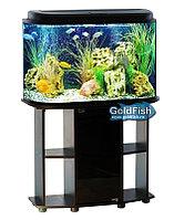 Аквариум GoldFish, оазис 120 литров с тумбой