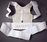 Корсет от сутулости Magnetic Posture Support, фото 2