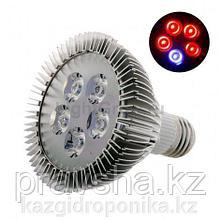 Фитолампа LED 15 W красный/синий