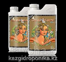 Sensi Coco Bloom pH Perfect Part A&B 4L