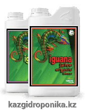 Iguana Juice Organic Bloom 1л