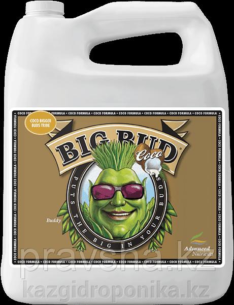 Стимулятор Big Bud Coco Liquid 500 мл