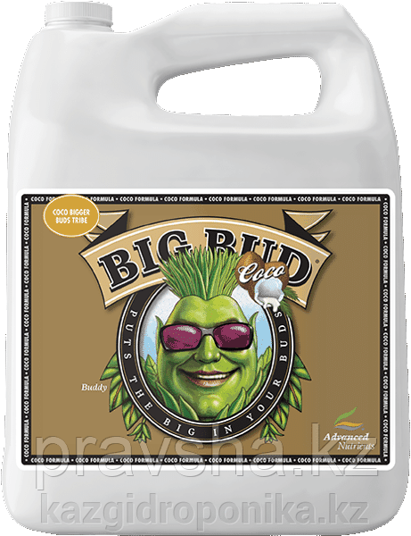 Стимулятор Big Bud Coco Liquid 1л