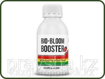 Стимулятор цветения Bio-Bloom Booster 100ml (Rastea)