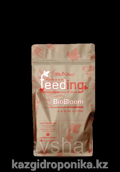 Powder Feeding BIO Bloom 0,125 kg