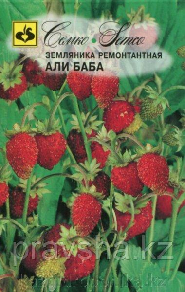 Семена Земляника ремонтантная Али Баба
