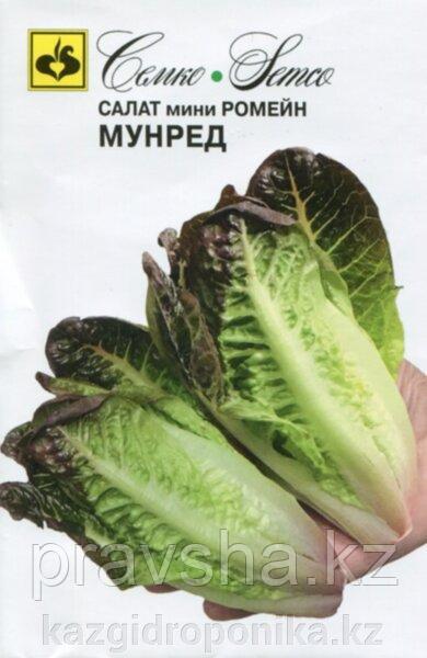 Семена салата мини ромейн Мунред