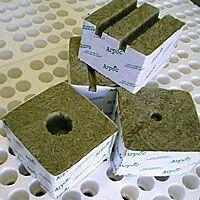 Кубики минераловатные 100х100х65 1 отверстие под пробку