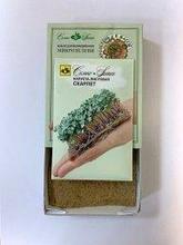 Набор семян для микрозелени: капуста листовая Скарлет