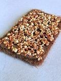 Набор семян для микрозелени: капуста листовая Скарлет, фото 4