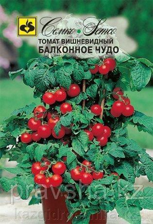 Семена томата Балконное Чудо (красные)