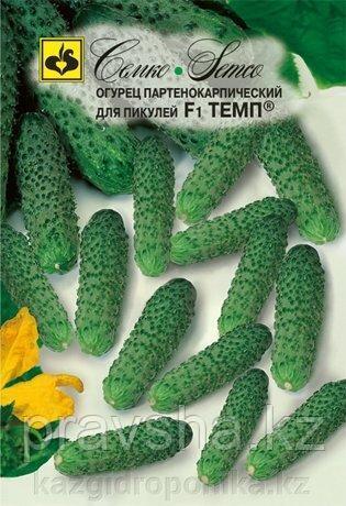 Семена огурца Темп F1