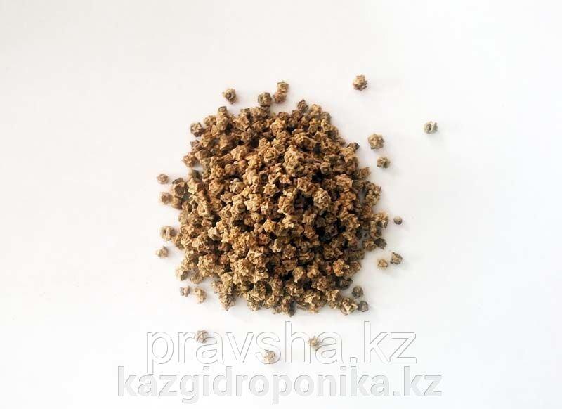 Свекла розовая семена для микрозелени, 100г