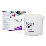 Exotiq Massage Candle Violet Rose - массажная свеча фиалка и роза, 200 мл. (только доставка), фото 3